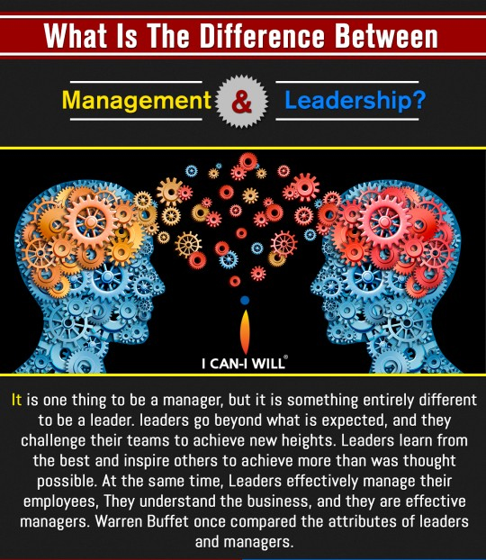 Fitting in – Understanding the difference between management and leadership