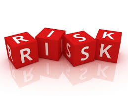 The principle of risk management